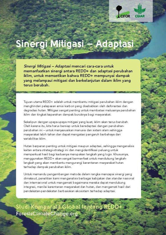 Sinergi Mitigasi – Adaptasi