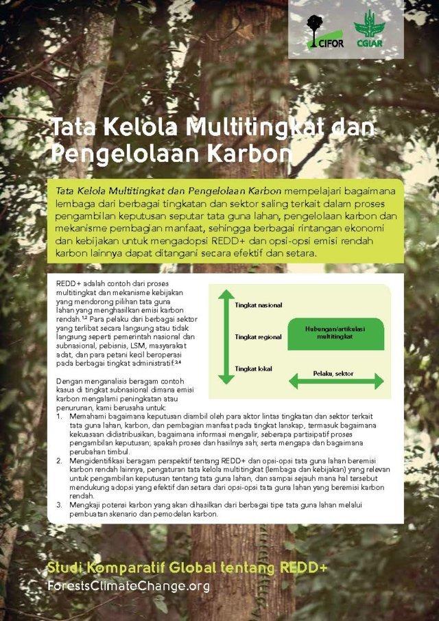 Tata Kelola Multitingkat dan Pengelolaan Karbon