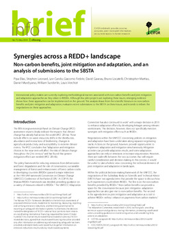 Synergies across a REDD+ landscape: Non-carbon benefits, joint mitigation and adaptation, and an analysis of submissions to the SBSTA