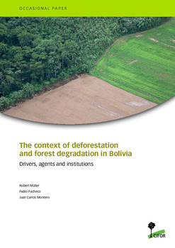 The context of deforestation and forest degradation in Bolivia
