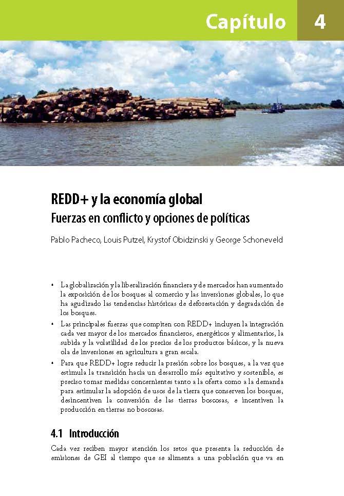 REDD+ y la economia global: Fuerzas en conflicto y opciones de politicas