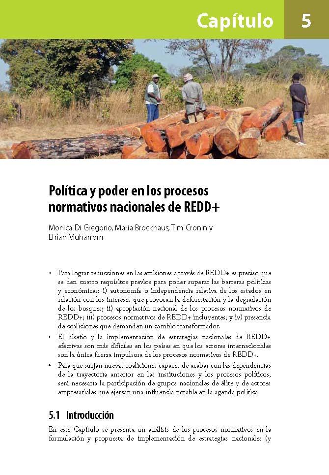 Política y poder en los procesos normativos nacionales de REDD+