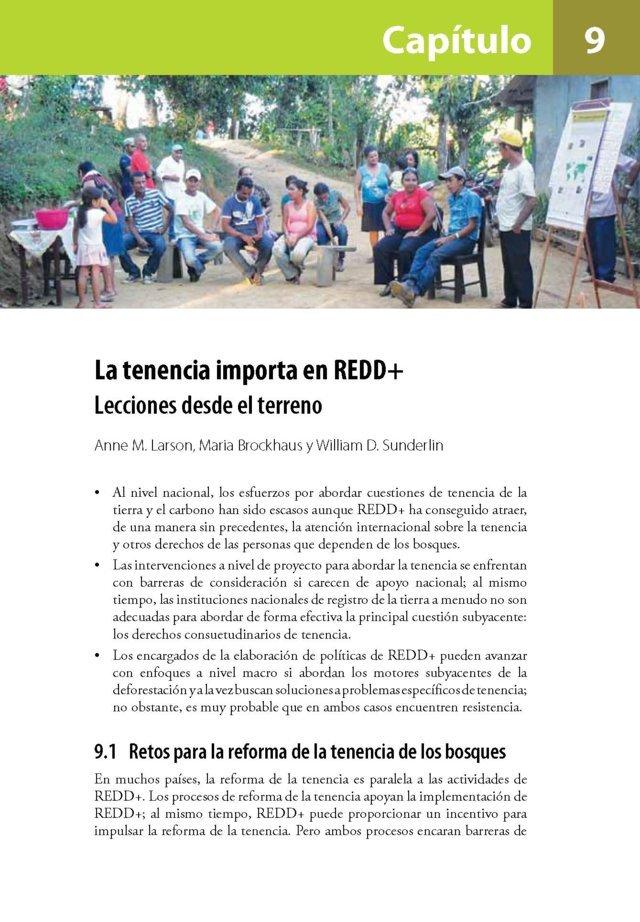 La tenencia importa en REDD+: Lecciones desde el terreno