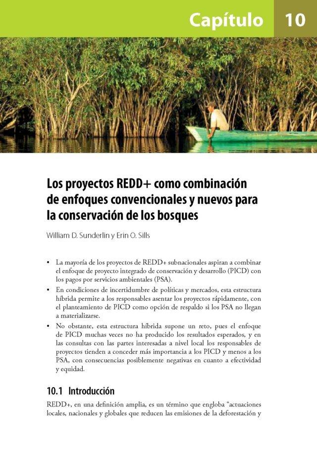 Los proyectos REDD+ como combinacion de enfoques convencionales y nuevos para la conservacion de los bosques
