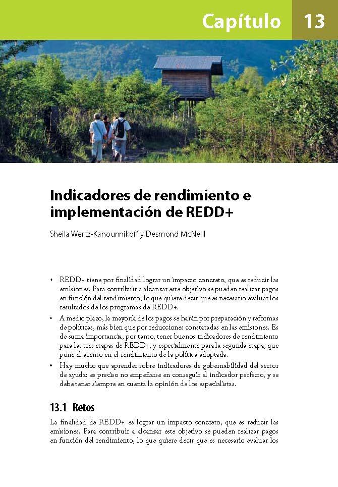 Indicadores de rendimiento e implementacion de REDD+