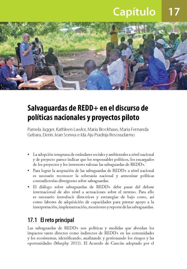 Salvaguardas de REDD+ en el discurso de poli-ticas nacionales y proyectos piloto