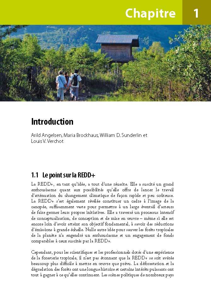 Introduction: Analyse de la REDD+: Les enjeux et les choix