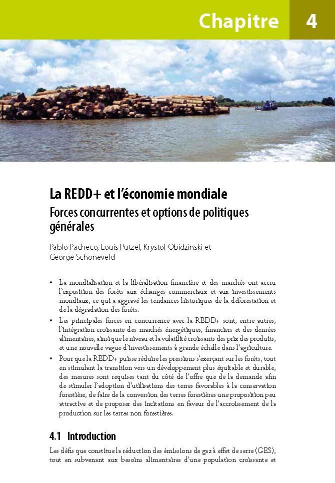 La REDD+ et l'economie mondiale: Forces concurrentes et options de politiques generales