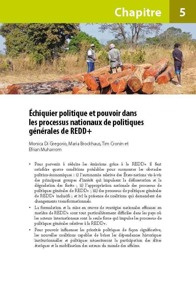 Echiquier politique et pouvoir dans les processus nationaux de politiques generales de REDD+