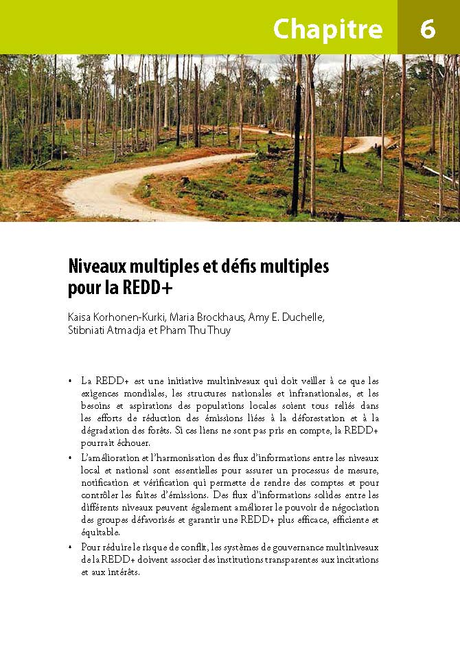Niveaux multiples et defis multiples pour la REDD+