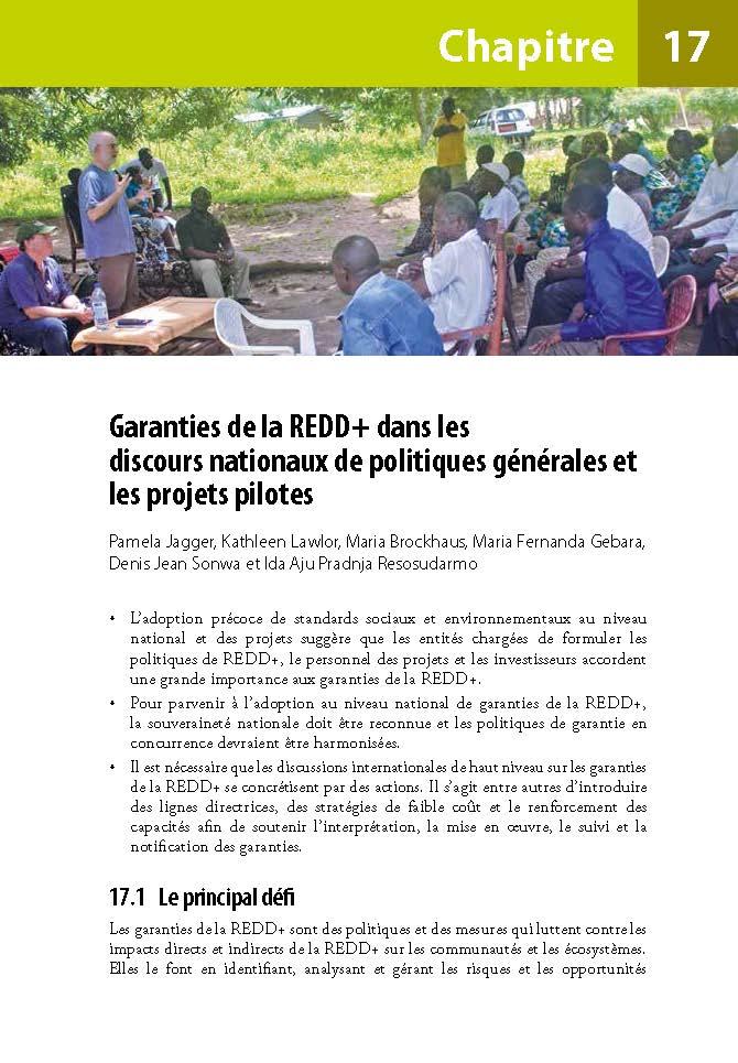 Garanties de la REDD+ dans les discours nationaux de politiques generales et les projets pilotes