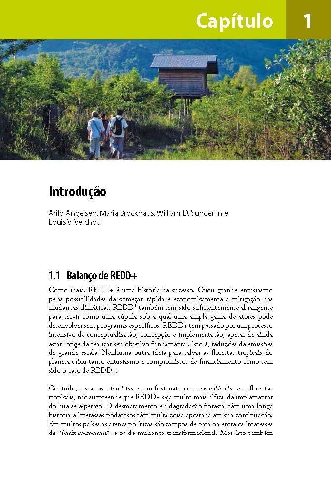 Introducao: Analise de REDD+: Desafios e escolhas
