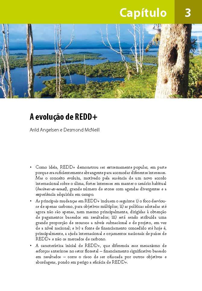 A evolução de REDD+