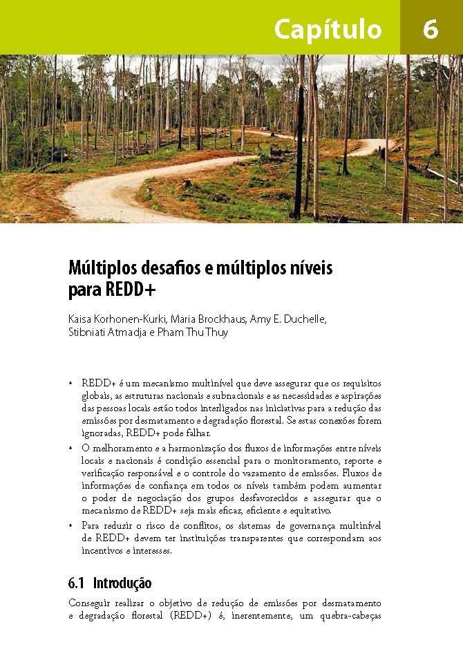 Multiplos desafios e multiplos niveis para REDD+