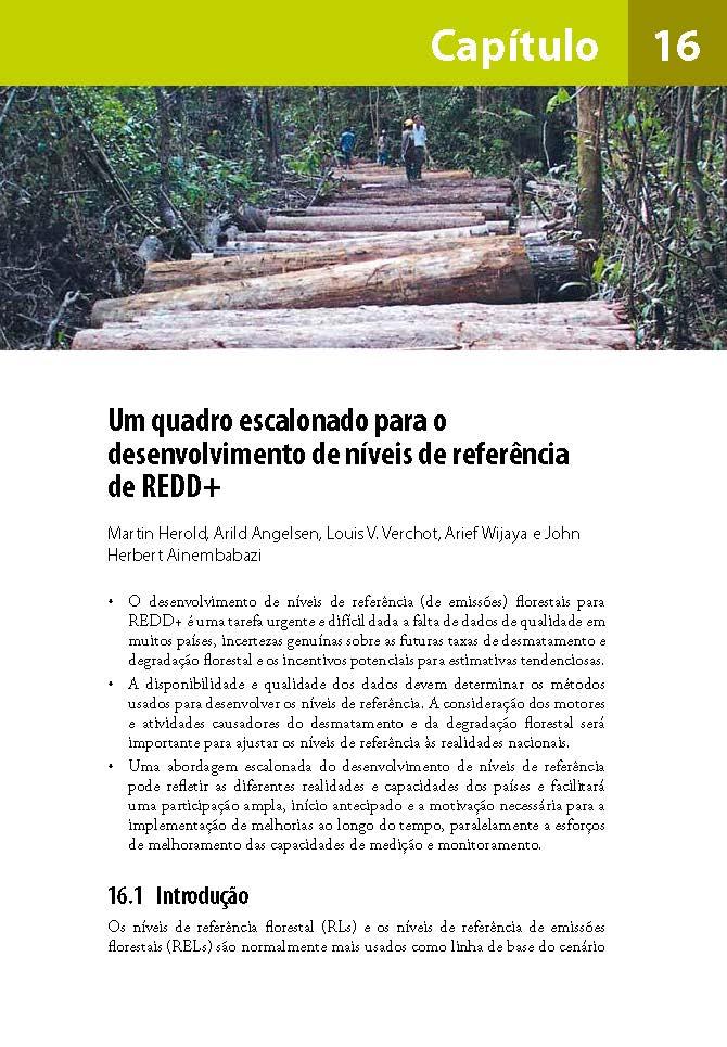 Um quadro escalonado para o desenvolvimento de niveis de referencia de REDD+