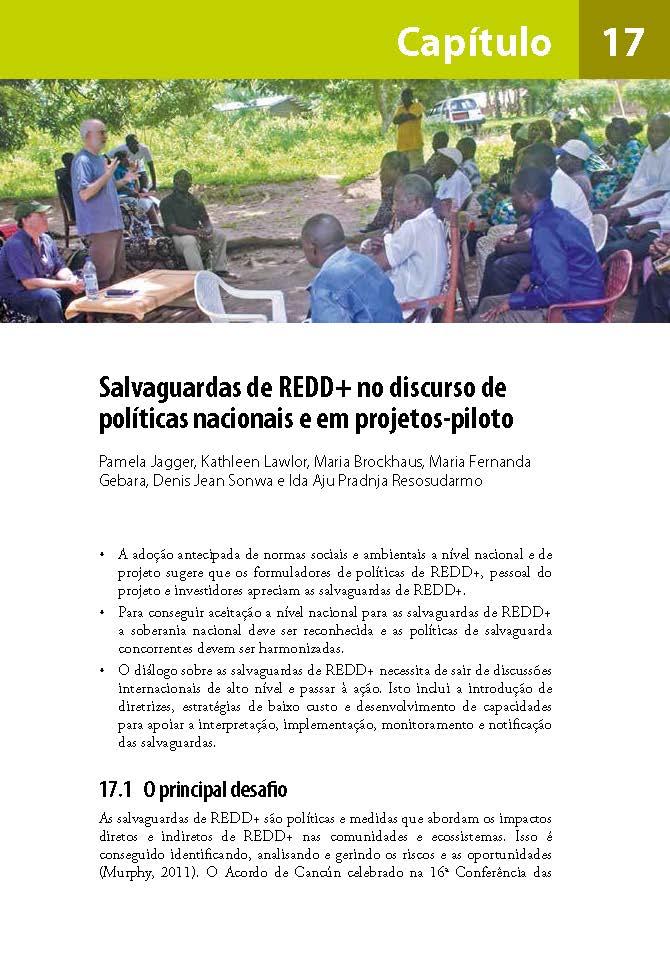 Salvaguardas de REDD+ no discurso de políticas nacionais e em projetos-piloto