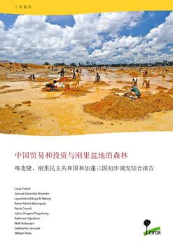 Chinese trade and investment and the forests of the Congo Basin: Synthesis of scoping studies in Cameroon, Democratic Republic of Congo and Gabon [Chinese]