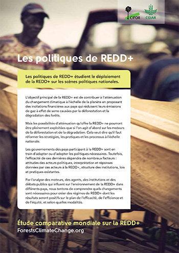 Les politiques de REDD+