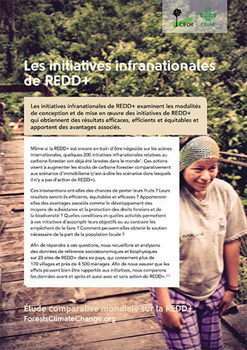 Les initiatives infranationales de REDD+