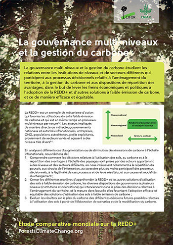 La gouvernance multi-niveaux et la gestion du carbone