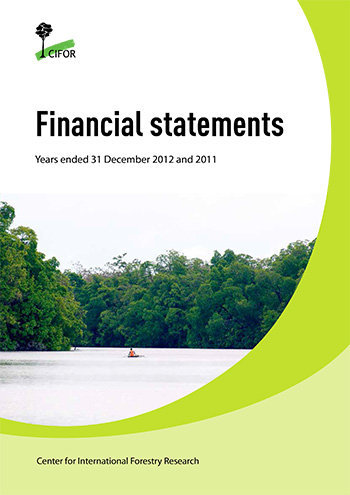 Financial statements 2012: Years ended 31 December 2012 and 2011