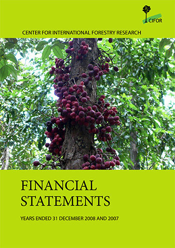 Financial statements 2008: Years ended 31 December 2008 and 2007