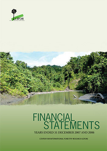Financial statements 2007: Years ended 31 December 2007 and 2006