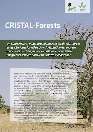 CRiSTAL – Forests