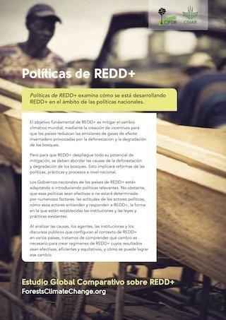 Políticas de REDD+