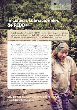 Iniciativas subnacionales de REDD+