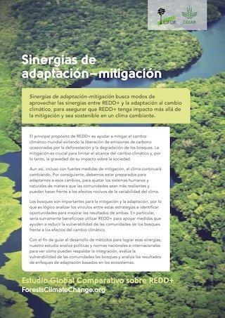 Sinergias de adaptación – mitigación