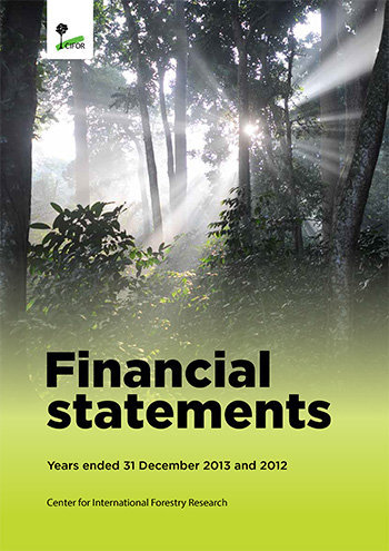 Financial statements 2013: Years ended 31 December 2013 and 2012