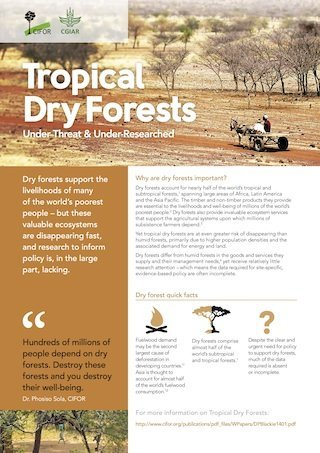 Tropical dry forests: under threat and under researched