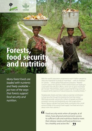 Forests, food security and nutrition