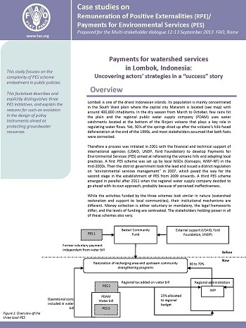 "Payments for watershed services in Lombok, Indonesia: Uncovering actors' strategies in a ""success"" story"
