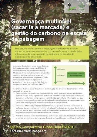 Governança multinível e gestão do carbono na escala da paisagem