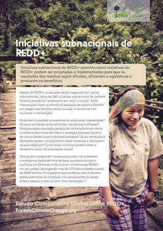 Iniciativas subnacionais de REDD+