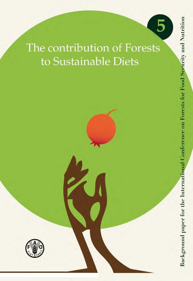 The Contribution of forests to sustainable diets
