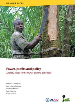 Power, profits and policy: A reality check on the Prunus africana bark trade