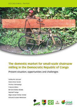 The domestic market for small-scale chainsaw milling in the Democratic Republic of Congo: Present situation, opportunities and challenges