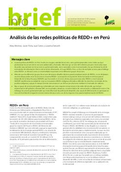 An&aacute;lisis de las redes pol&iacute;ticas de REDD+ en Per&uacute;<br>