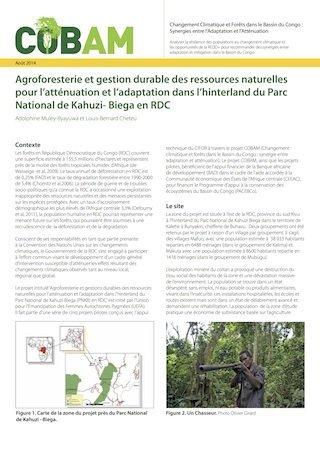 Agroforesterie et gestion durable des ressources naturelles pour l'atténuation et l'adaptation dans l'hinterland du Parc National de Kahuzi- Biega en RDC