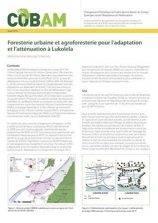 Foresterie urbaine et agroforesterie pour l'adaptation et l'att�nuation � Lukolela