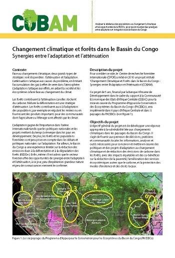 Changement climatique et for�ts dans le Bassin du Congo: Synergies entre l'adaptation et l'atténuation