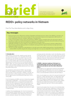 REDD+ policy networks in Vietnam