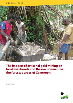 The impacts of artisanal gold mining on local livelihoods and the environment in the forested areas of Cameroon