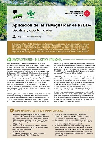 Aplicación de las salvaguardas de REDD+: Desafíos y oportunidades
