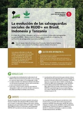 La evolución de las salvaguardas sociales de REDD+ en Brasil, Indonesia y Tanzania: Procesos de políticas, diálogos y acciones a múltiples niveles sobre salvaguardas sociales de REDD+: Retos y oportunidades para la medición, el reporte y la verificación de salvaguardas nacionales de REDD+