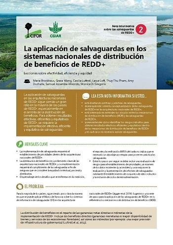 La aplicación de salvaguardas en los sistemas nacionales de distribución de beneficios de REDD+: Lecciones sobre efectividad, eficiencia y equidad