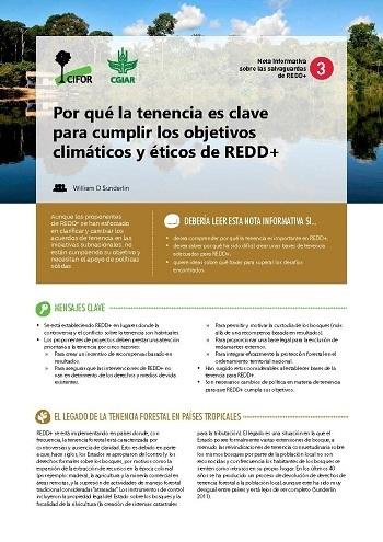 Por qué la tenencia es clave para cumplir los objetivos climáticos y éticos de REDD+
